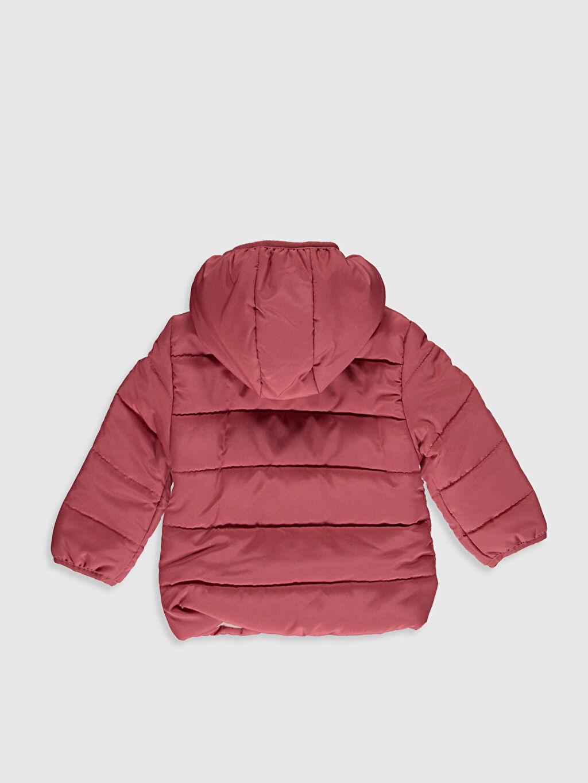 %100 Polyester %100 Polyester Kaban Kız Bebek Kapüşonlu Fermuarlı Kaban