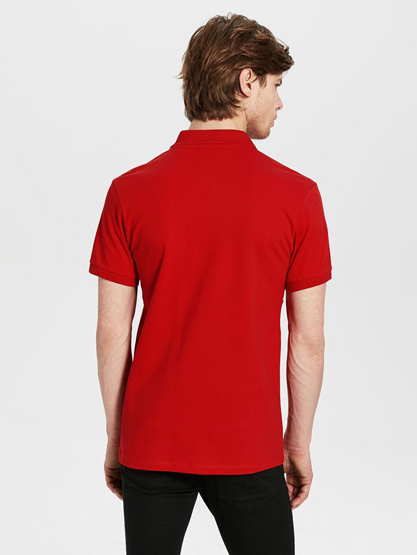 %97 Pamuk %3 Elastan Standart Baskılı Kısa Kol Tişört Polo Polo Yaka Baskılı Pike Tişört