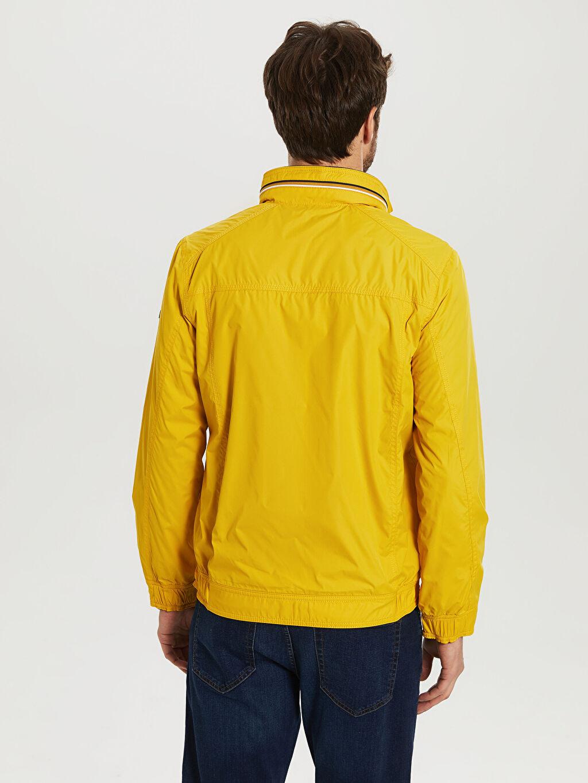 Sarı Dik Yaka İnce Basic Mont