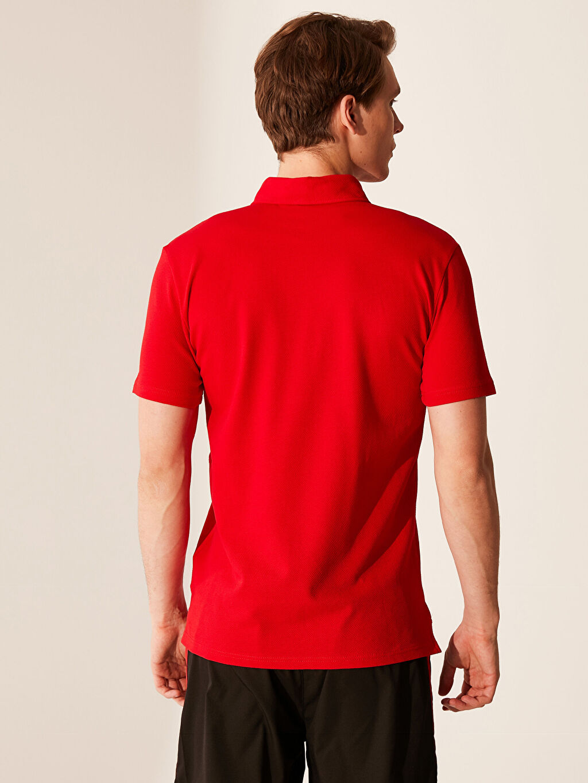 %98 Pamuk %2 Elastan Düz Standart Kısa Kol Tişört Polo Polo Yaka Aktif Spor Tişört