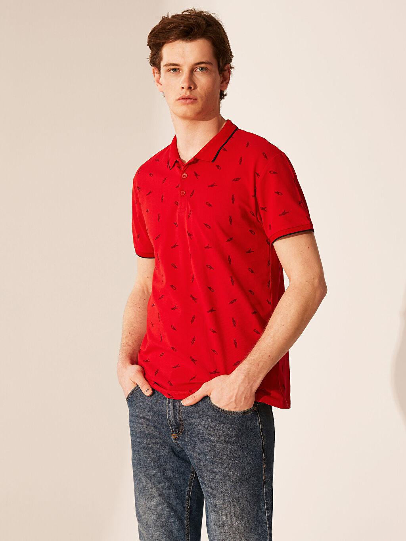 Kırmızı Polo Yaka Desenli Tişört 0SO566Z8 LC Waikiki