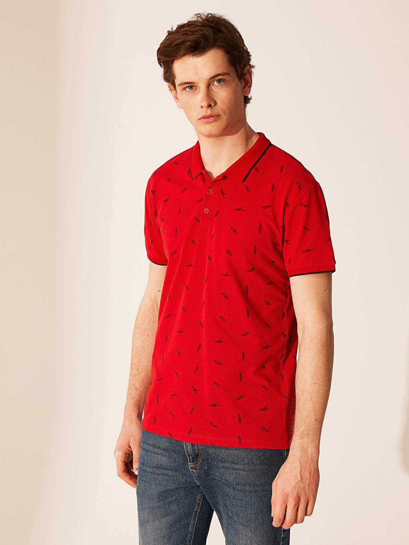 %100 Pamuk Standart Baskılı Kısa Kol Tişört Polo Polo Yaka Desenli Tişört