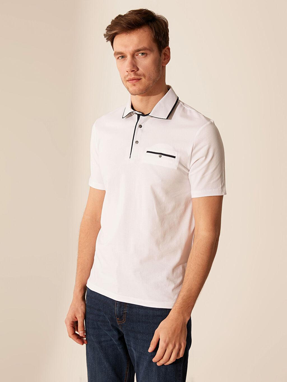 %96 Pamuk %4 Elastan Düz Standart Kısa Kol Tişört Polo Polo Yaka Şeritli Tişört