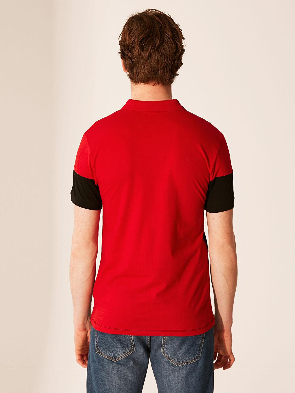Erkek Polo Yaka Renk Bloklu Tişört