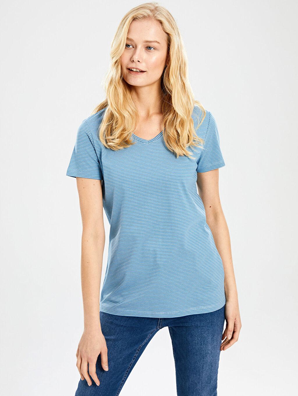 %76 Pamuk %24 Polyester Standart Çizgili Yok Kısa Kol Tişört V yaka Çizgili V Yaka Tişört