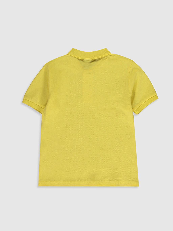 %100 Pamuk Düz Normal Polo Tişört Kısa Kol Erkek Çocuk Pamuklu Polo Yaka Tişört