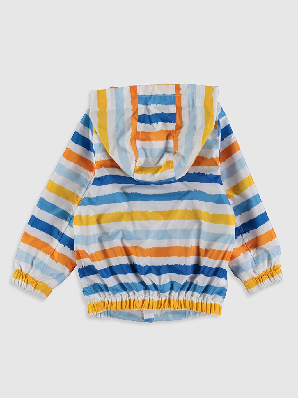 %100 Polyester %64 Polyester %36 Viskon Trençkot ve Yağmurluk Erkek Bebek Çizgili Yağmurluk