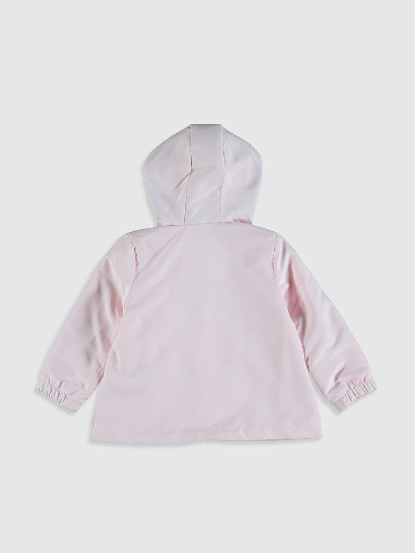 %100 Polyester %100 Pamuk %100 Pamuk Mont Kız Bebek Kapüşonlu Mont