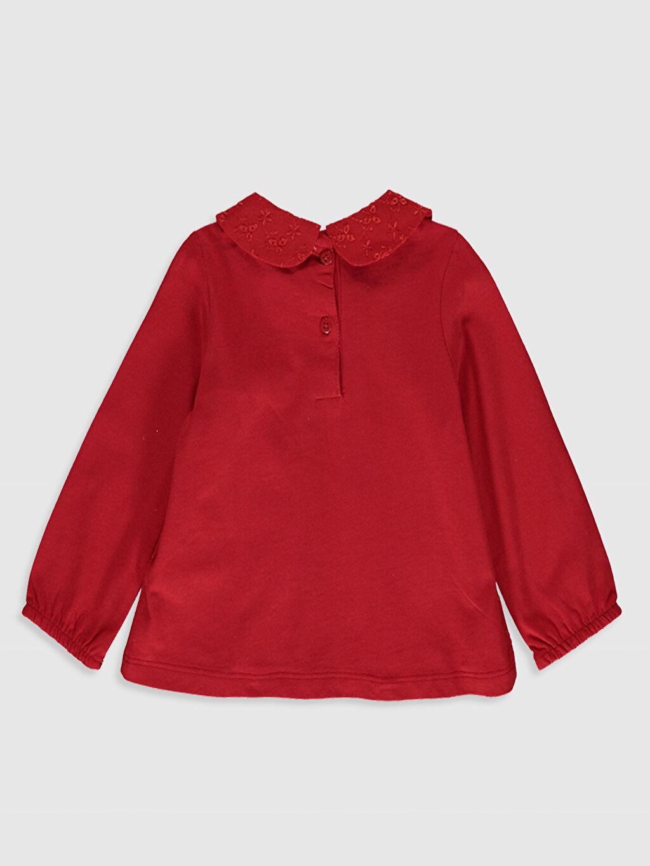 %100 Pamuk Standart Düz Uzun Kol Tişört Diğer Kız Bebek Pamuklu Tişört