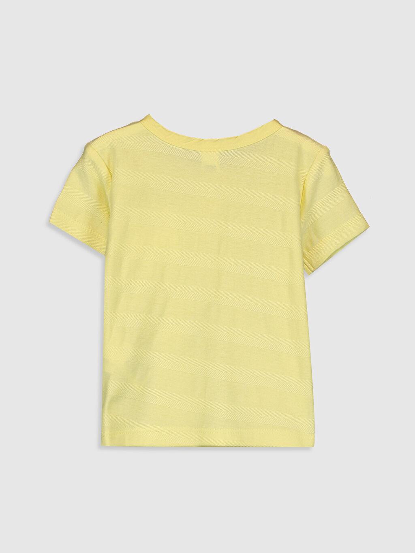 %100 Pamuk Normal Düz Kısa Kol Tişört Bisiklet Yaka Erkek Bebek Pamuklu Baskılı Tişört
