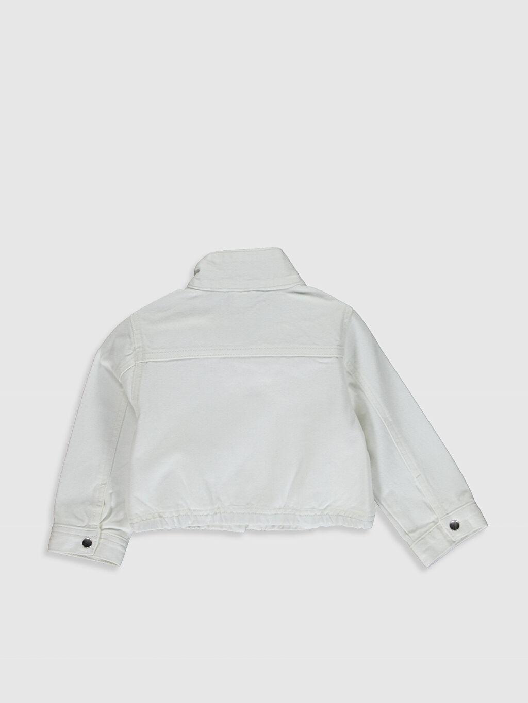 %100 Pamuk Orta Ceket Kız Bebek Gabardin Ceket