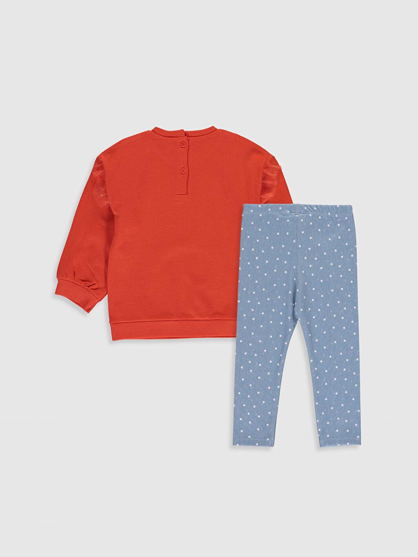%100 Pamuk %32 Pamuk %64 Polyester %4 Elastan  Kız Bebek Baskılı Sweatshirt ve Tayt