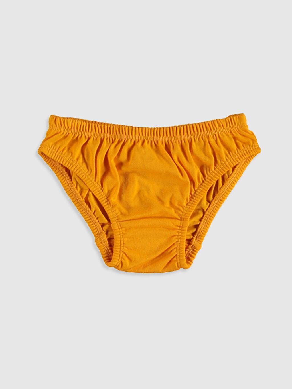 %100 Pamuk Standart İç Giyim Alt Erkek Bebek Külot 3'lü