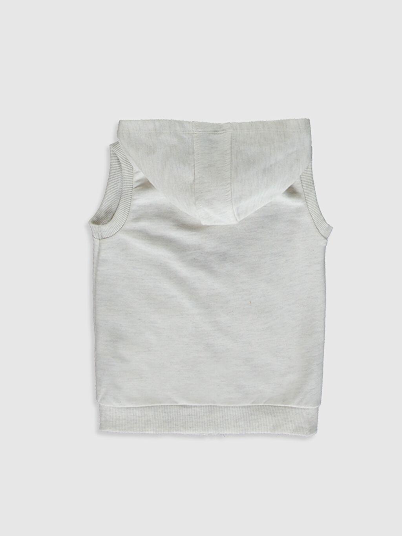 %49 Pamuk %51 Polyester Süveter ve Yelek Düz İnce Kapüşonlu Erkek Bebek Kapüşonlu Yelek