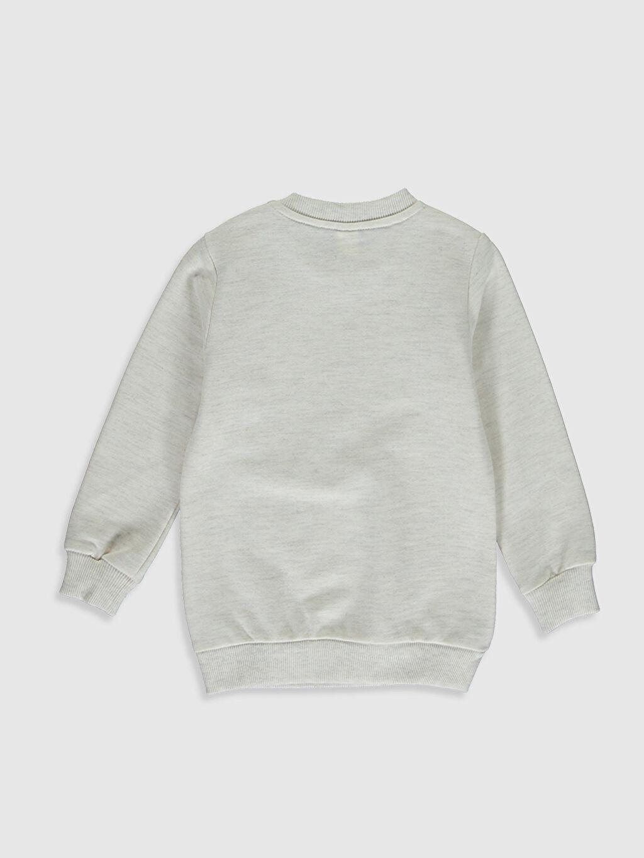 %49 Pamuk %51 Polyester  Erkek Bebek Sweatshirt