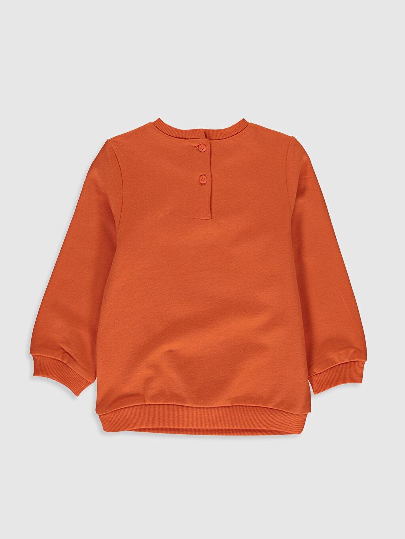 %100 Pamuk  Kız Bebek Sweatshirt