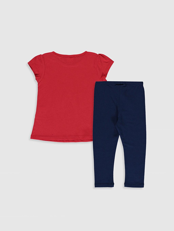 %100 Pamuk %97 Pamuk %3 Elastan  Kız Bebek Tişört ve Tayt