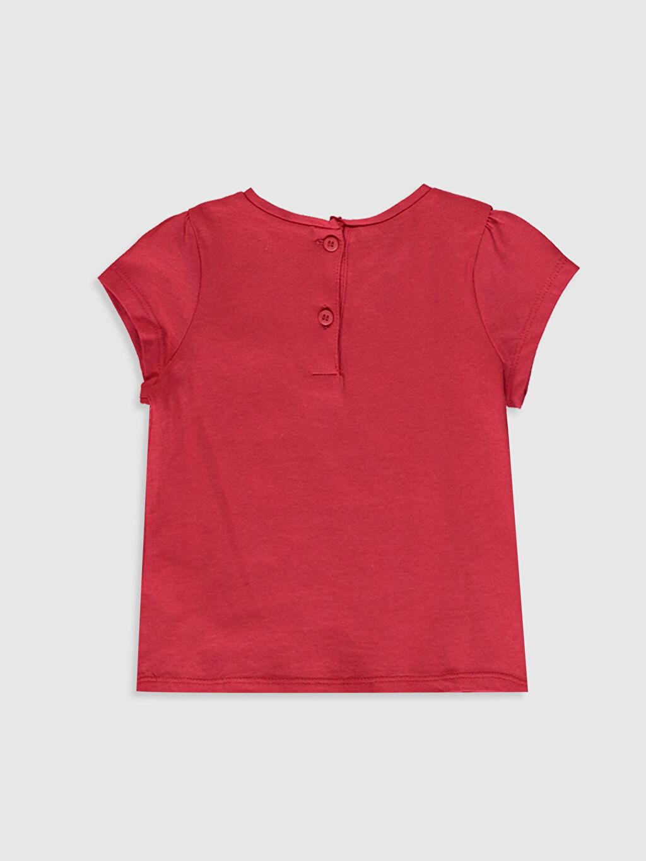 %100 Pamuk Baskılı Kısa Kol Tişört Bisiklet Yaka Kız Bebek Baskılı Pamuklu Tişört