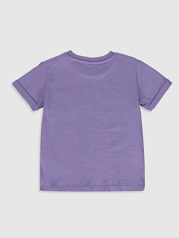 %100 Pamuk Normal Düz Kısa Kol Tişört Bisiklet Yaka Erkek Bebek Basic Pamuklu Tişört