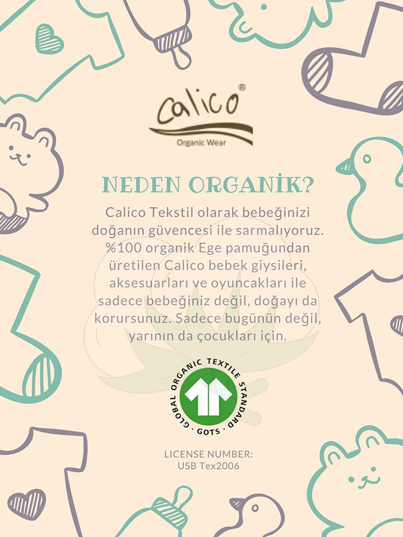 Erkek Bebek Calico Organik Pamuklu Çıtçıtlı Body