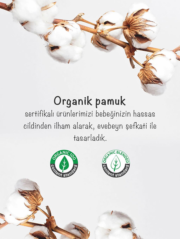 Standart Kalın Takım 0-12 Ay Patikli Bere %100 Pamuk Yenidoğan Organik Pamuklu Takım 3'Lü