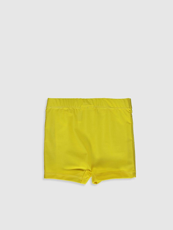 Плавательные шорты -0SB264Z1-FQ6