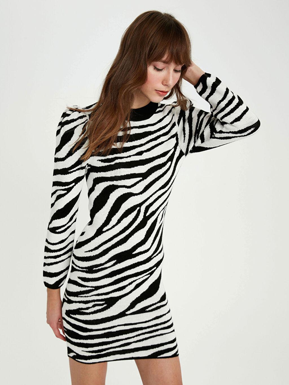 Kadın Zebra Desenli Triko Elbise