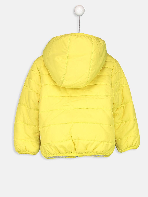%100 Polyester %100 Polyester Mont Kalın Şarpa Astar Erkek Bebek Kapüşonlu Kalın Kaban