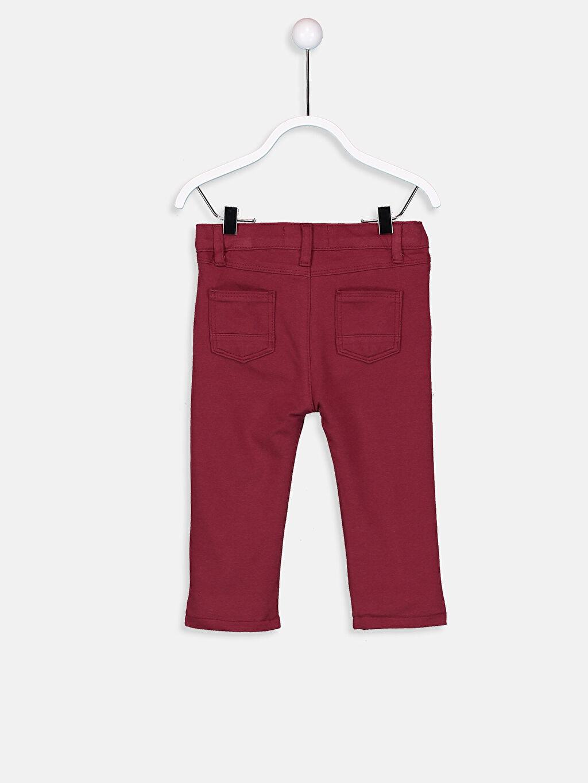 Erkek Bebek Erkek Bebek Pamuklu Pantolon