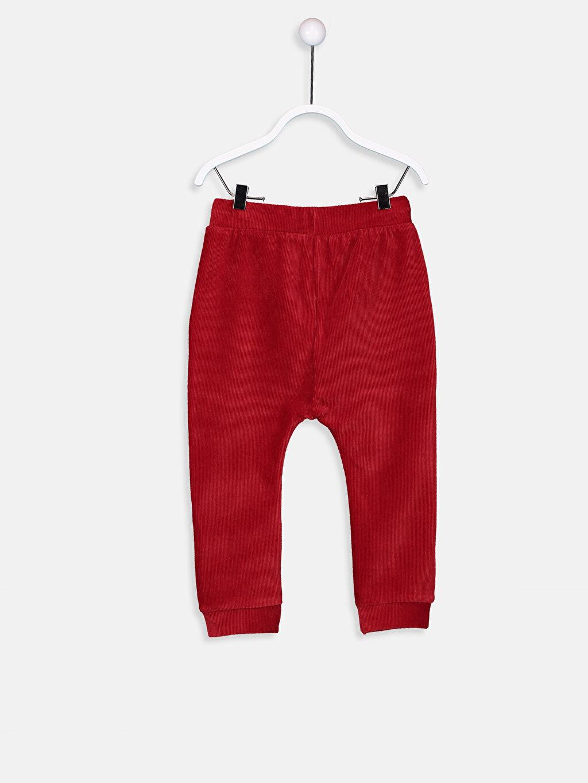 %67 Pamuk %30 Polyester %3 Elastan Eşofman Altı Kadife Standart Erkek Bebek Kadife Pantolon