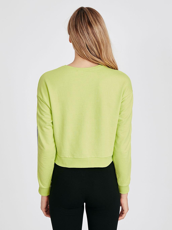 Kadın Şerit Detaylı Neon Sweatshirt