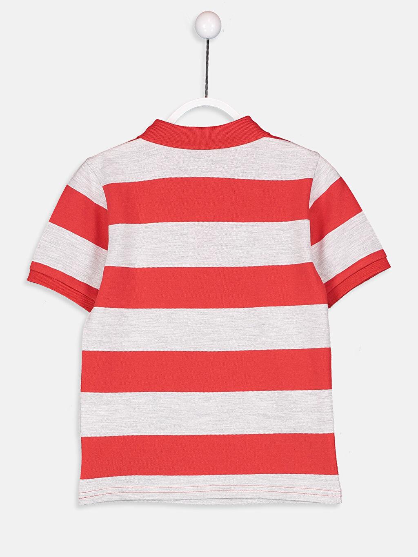 %99 Pamuk %1 Polyester Çizgili Tişört Pike Polo Yaka Standart Yüksek Pamuk İçerir Erkek Çocuk Çizgili Basic Tişört