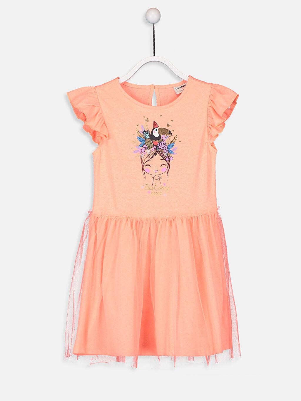 Mercan Kız Çocuk Baskılı Fırfırlı Elbise 9SR427Z4 LC Waikiki