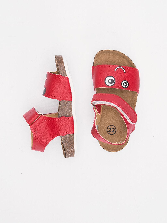 Diğer malzeme (poliüretan) Diğer malzeme (pvc) Cırt Cırt ve Fermuar Günlük Sandalet Erkek Bebek Deri Görünümlü Cırt Cırtlı Sandalet