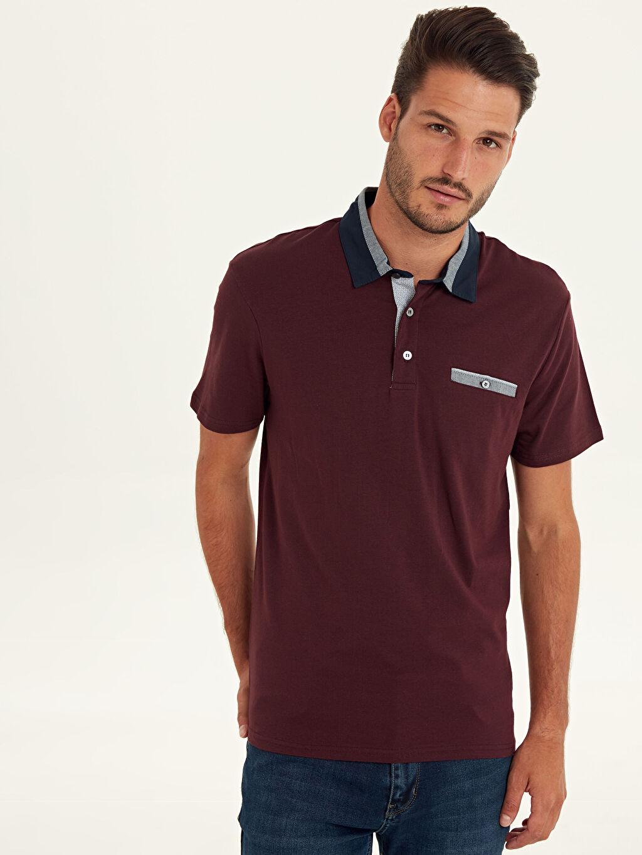 %96 Pamuk %4 Elastan Standart Tişört Polo Yaka Kısa Kol Düz Süprem Polo Yaka Kısa Kollu Pamuklu Tişört