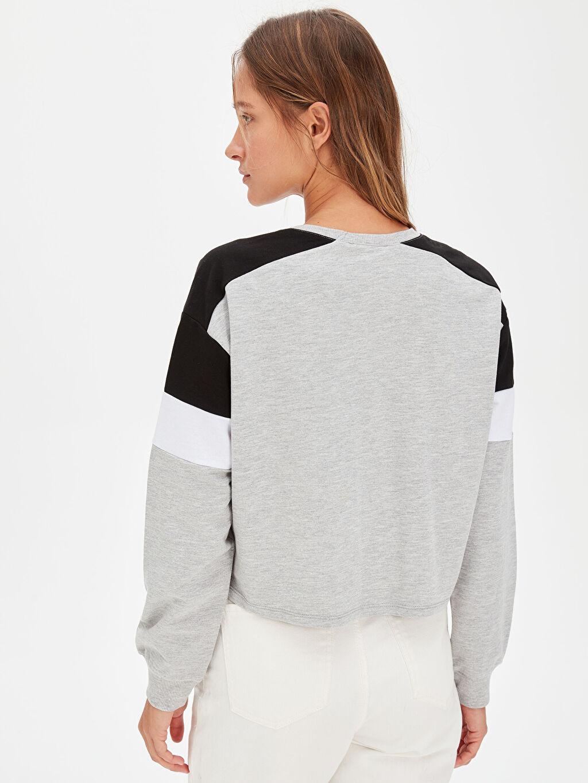 %49 Pamuk %51 Polyester Renk Bloklu Sweatshirt
