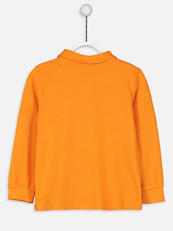 %100 Pamuk Standart Tişört Pike Polo Yaka Uzun Kol Düz %100 Pamuk Kız Çocuk Pamuklu Basic Tişört