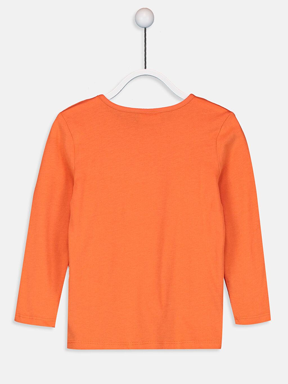 %100 Pamuk %100 Pamuk Süprem Tişört Bisiklet Yaka Uzun Kol Düz Standart Kız Çocuk Pamuklu Basic Tişört