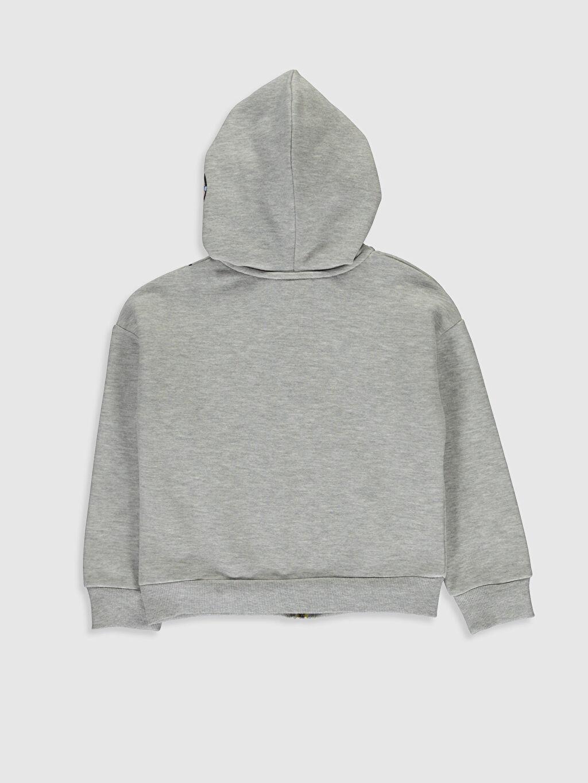 %38 Pamuk %62 Polyester Sweatshirt Üç İplik İçi Tüylü Kapüşonlu Düz Kız Çocuk Fermuarlı Kapüşonlu Sweatshirt