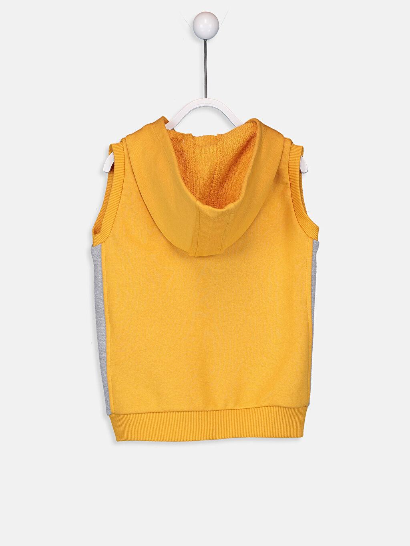 %70 Pamuk %30 Polyester Casual/Günlük Sweatshirt Kumaşı Yelek Orta Kalınlık Düz Kapüşon Yaka Standart Yüksek Pamuk İçerir Erkek Bebek Kapüşonlu Fermuarlı Yelek