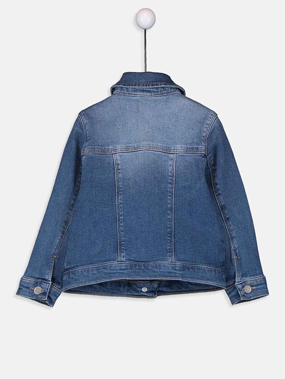 %99 Pamuk %1 Elastan Ceket Yaka Düz Kalın Jean Ceket Standart Kız Bebek Jean Ceket