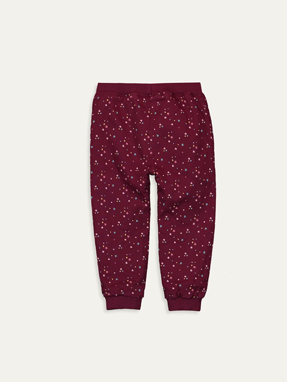 %98 Pamuk %2 Elastan %100 Polyester Standart Normal Bel Günlük Pantolon Puantiye Gabardin Kız Bebek Desenli Gabardin Pantolon