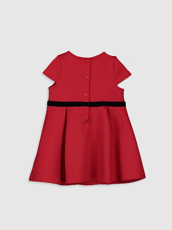 %90 Polyester %10 Elastan Kız Bebek Kuşak Detaylı Elbise