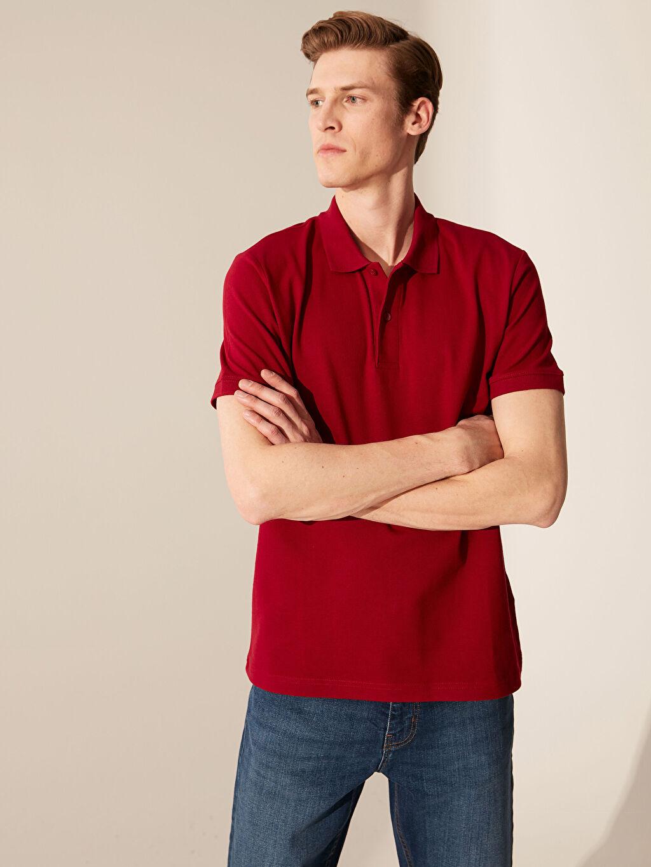 0S7197Z8 Polo Yaka Basic Pike Tişört