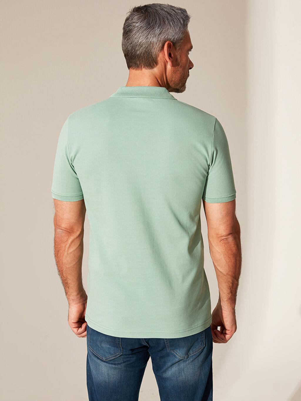 Erkek Polo Yaka Basic Pike Tişört