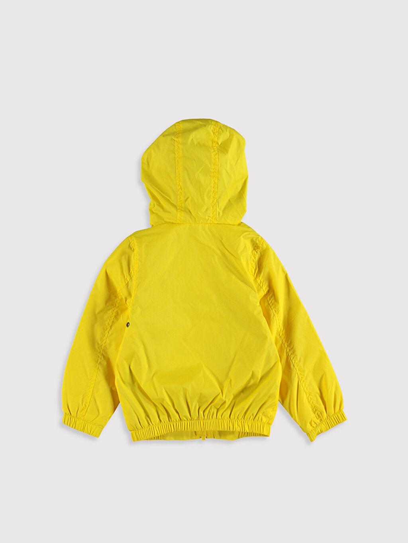 %100 Polyester %67 Pamuk %33 Polyester Mont Penye Astar Standart İnce Tafetta Kapüşonlu Düz Kapüşon Yaka Uzun Kol Erkek Bebek Fermuarlı Mont