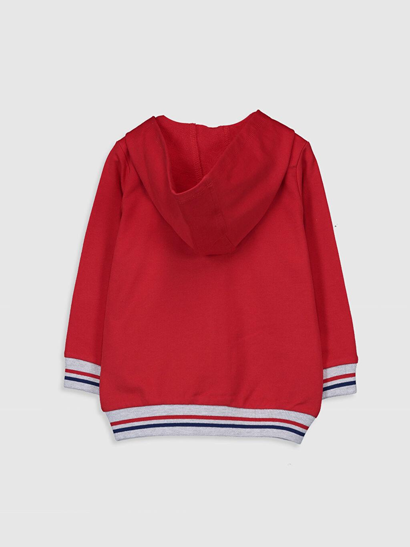 %82 Pamuk %18 Polyester Spor Hırka İki İplik İçi Tüylü Düz Kapüşon Yaka Standart Günlük Erkek Bebek Kapüşonlu Fermuarlı Sweatshirt