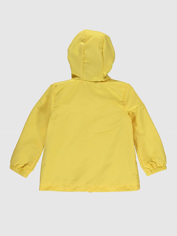 %100 Polyester %100 Pamuk %100 Pamuk İnce Uzun Kol Kısa Penye Astar Mont Polar Kapüşonlu Çizgili Kız Bebek Kapüşonlu Mont