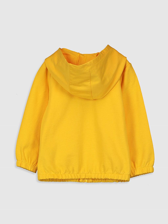 %100 Pamuk Uzun Kol Sweatshirt Kapüşon Yaka %100 Pamuk Kız Bebek Kapüşonlu Sweatshirt