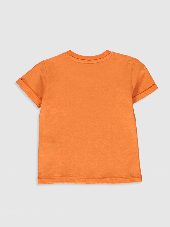 %100 Pamuk %100 Pamuk Tişört Bisiklet Yaka Kısa Kol Düz Penye Aksesuarsız Standart Erkek Bebek Basic Pamuklu Tişört